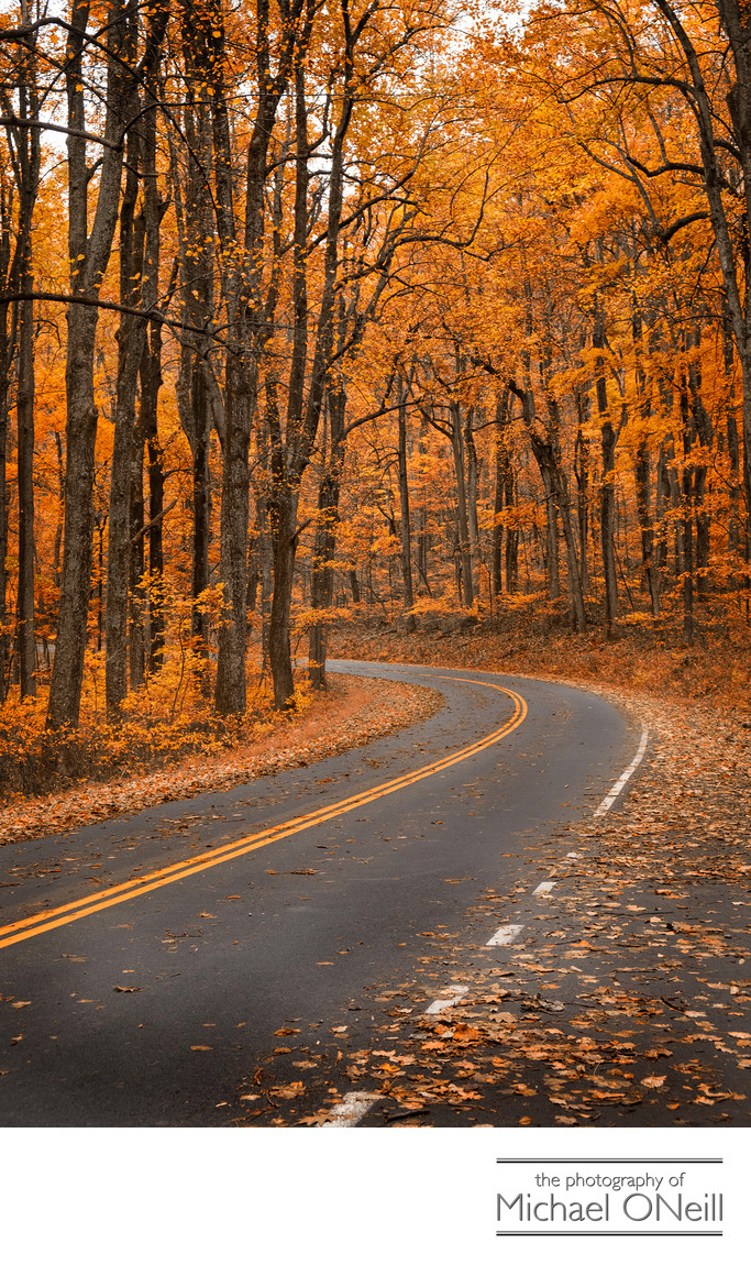 Motorcycle Road Trip Skyline Drive Fall Foliage