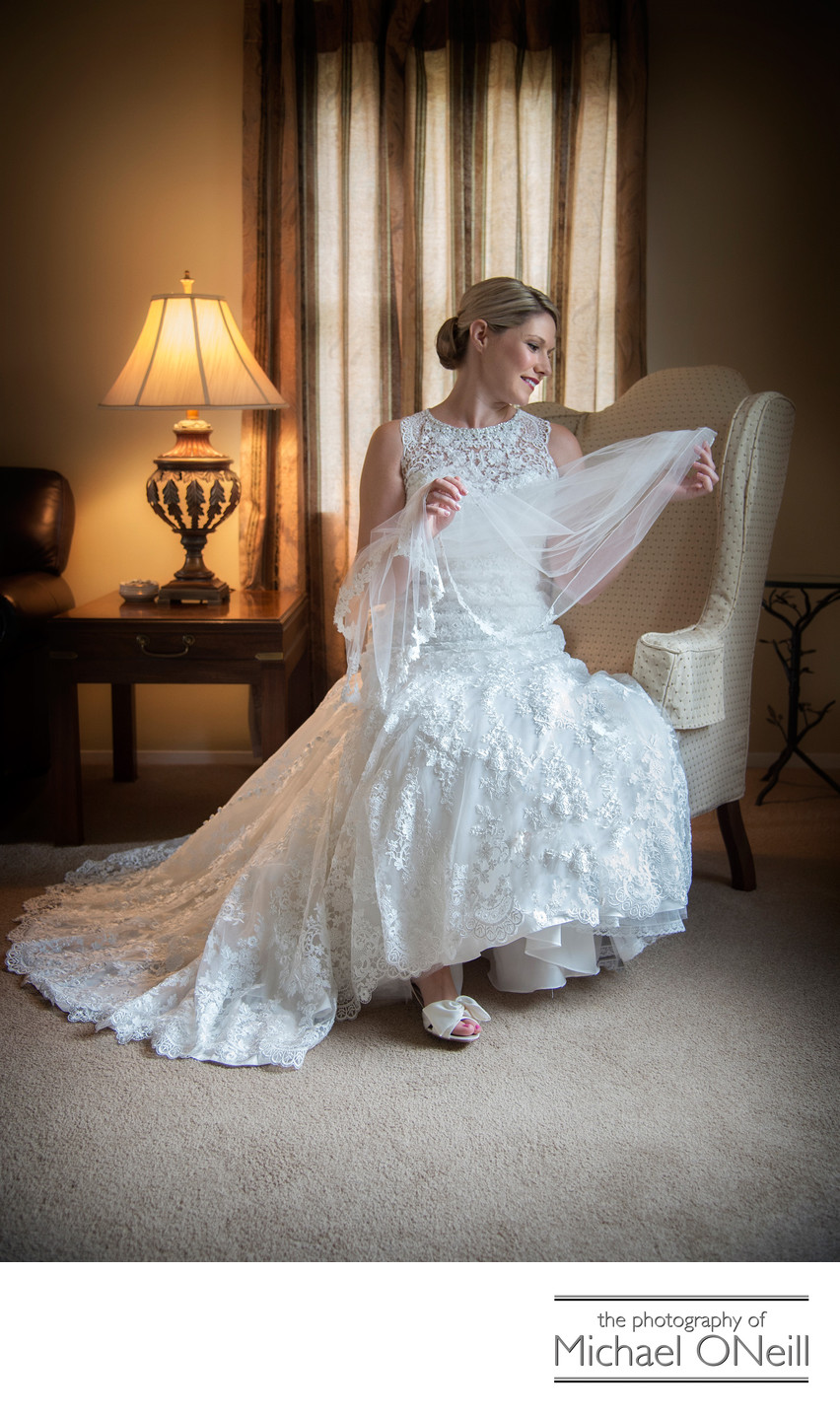 Great Wedding Gown and Bridal Veil Photographs