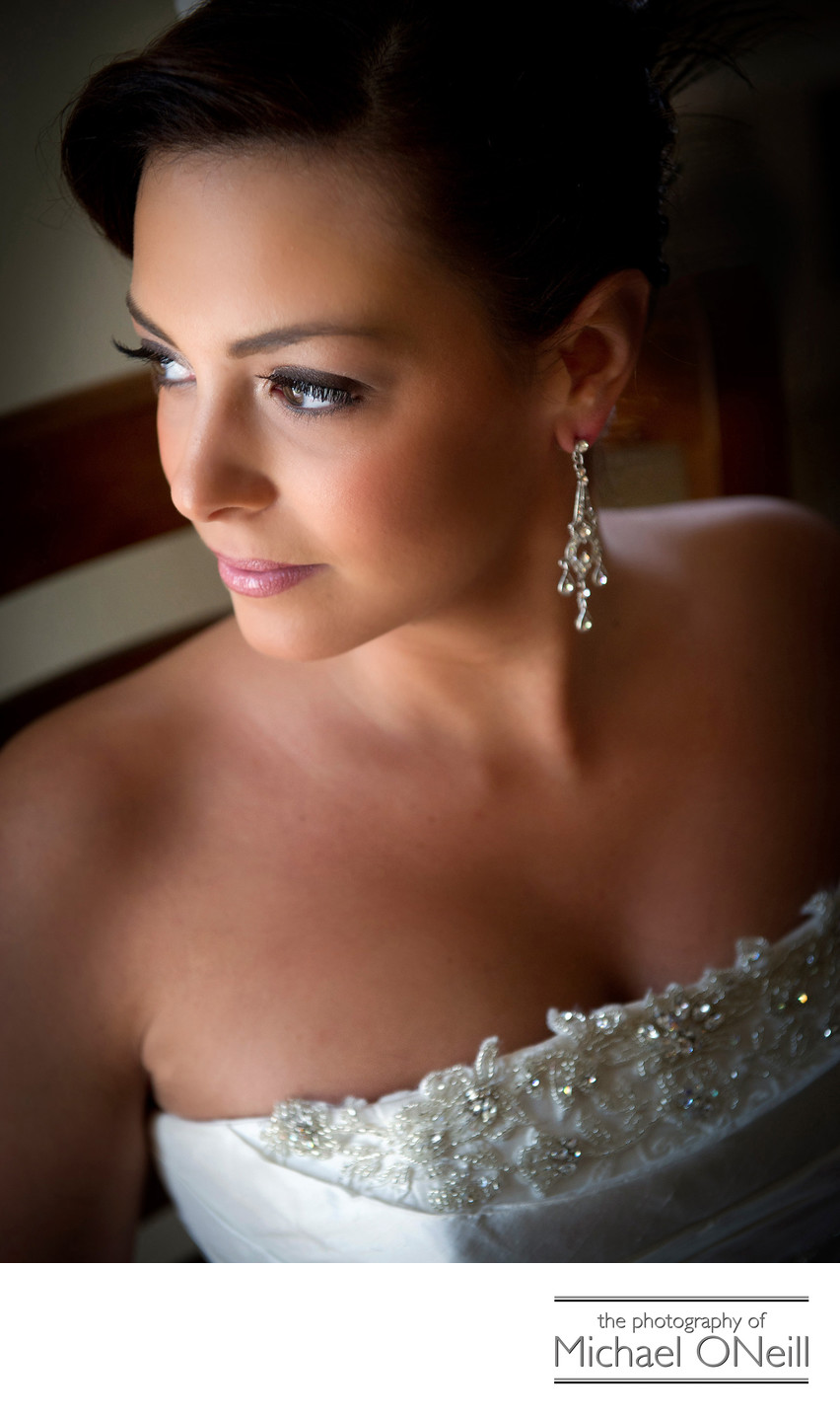 best Carlyle wedding photographer long island