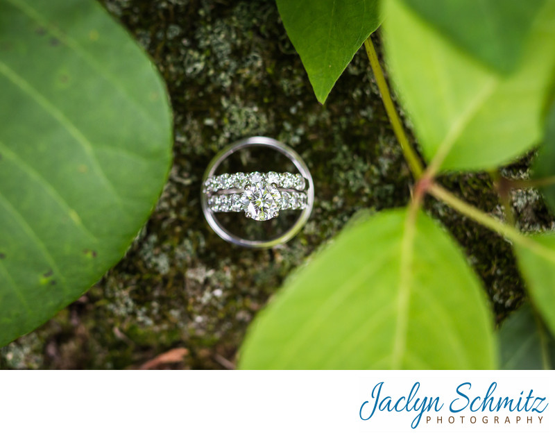 creative wedding ring detail shot in vines