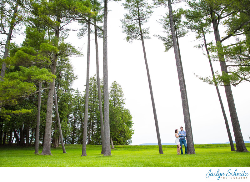 Pine Trees Engagement Session