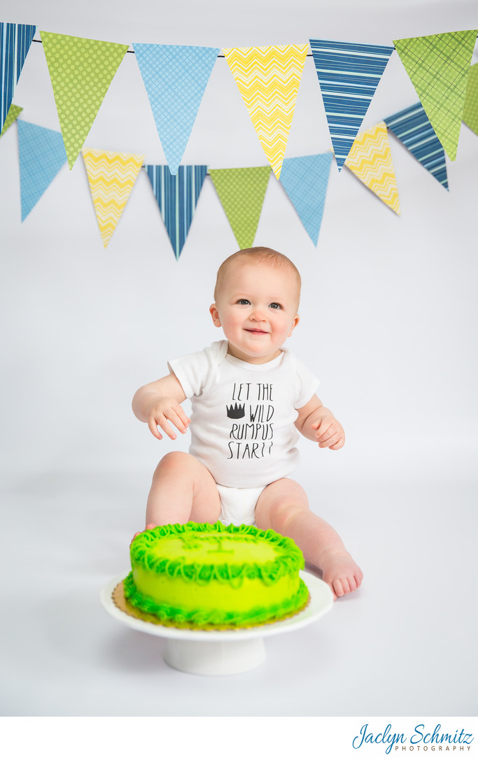 baby's first cake photographer vt