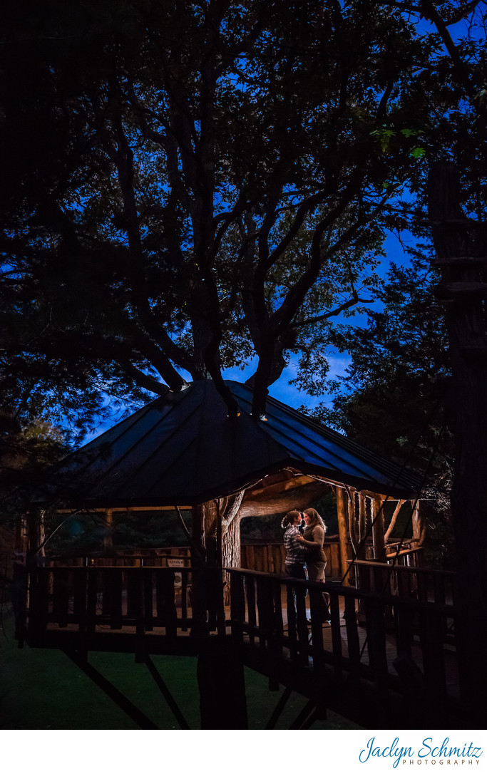 Oakledge Park Tree House Engagement Session