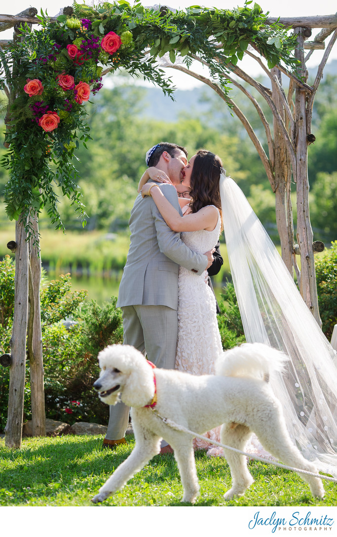 Poodle photobombs wedding ceremony first kiss