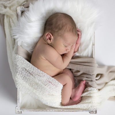 Newborn Photographers Wilmington