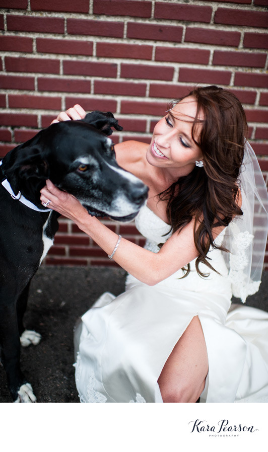 Denver Bride With Great Dane