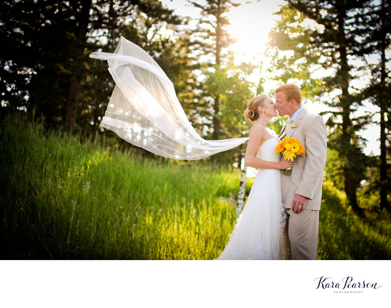 Evergreen Wedding Portrait