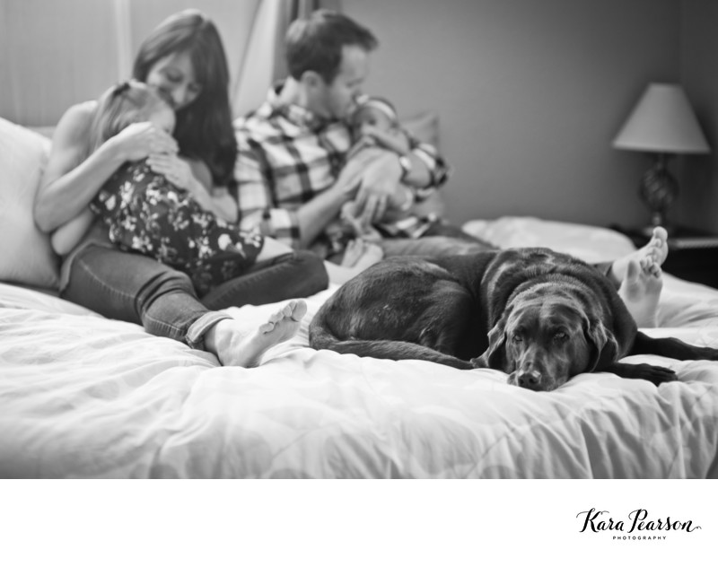 Newborn Family Portraits With A Dog