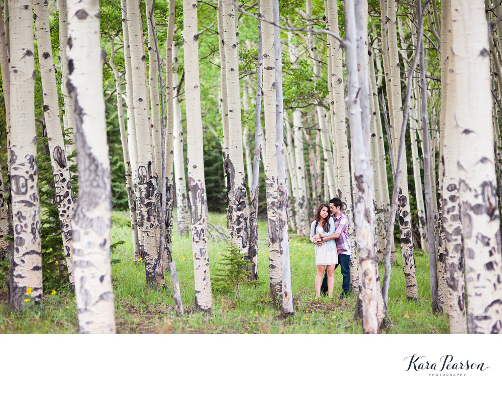 Aspen Tree Engagement Portraits In Evergreen