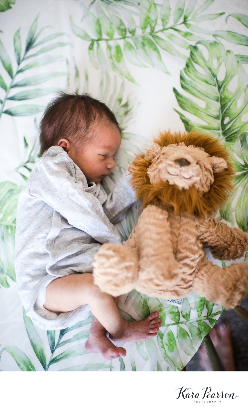 Newborn Baby Sleeps With Stuffed Animal