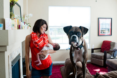 Arvada Newborn Portraits With Dog