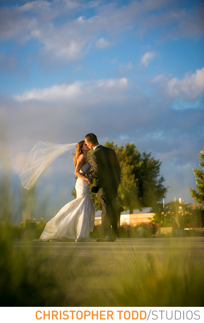 Callaway Vineyard Featuring Bride and Groom