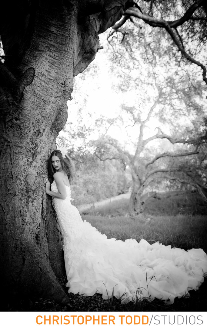 Orange County Photographer Bride Wearing Yumi Katsura Gown