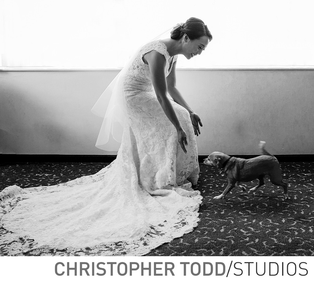 Best Southern California Wedding Photographer