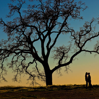 Las Virgenes Canyon Engagement Session
