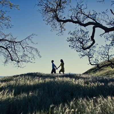 Las Virgenes Highland Park Engagement Pictures