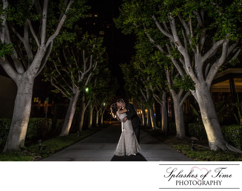 Avenue of The Arts Wyndham Wedding Photographer
