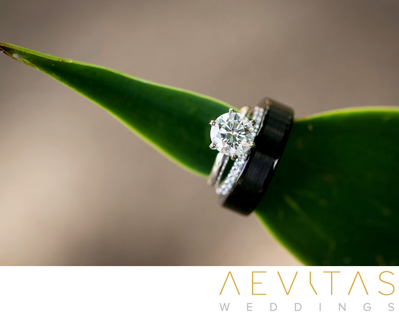 Wedding rings on green leafy by LA photographer