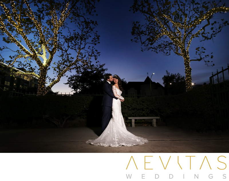 Couple portrait with beautifully-lit trees in LA