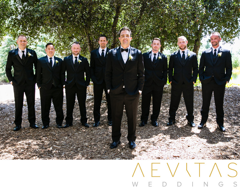 Groomsmen portrait beneath tree at Oak Glen wedding