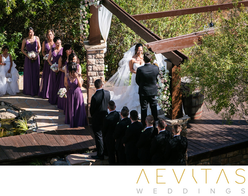 Couple with bridal party at Oak Glen wedding ceremony