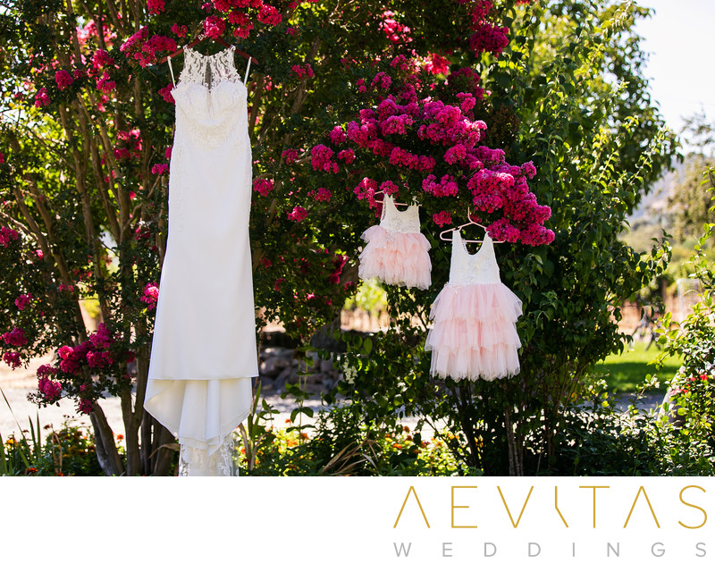 Wedding dress and flower girl dresses hanging in tree
