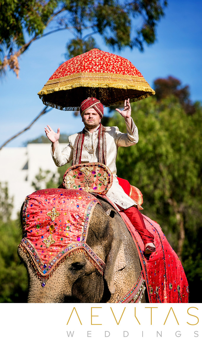 Indian groom on traditionally decorated elephant