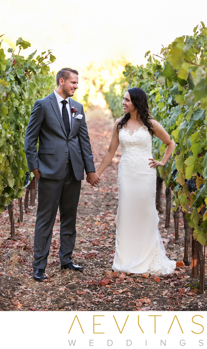 Couple holding hands in vine row at Kenwood wedding
