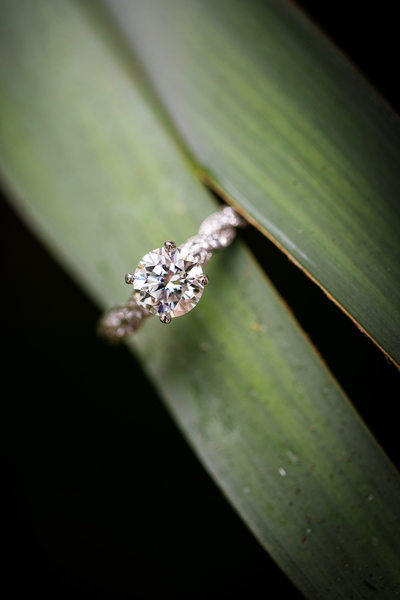 Wedding ring with leaf by Santa Barbara photographer