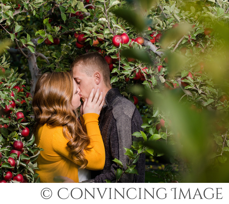 apple orchard engagements logan
