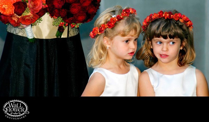 Whispering flower girls — panorama crop
