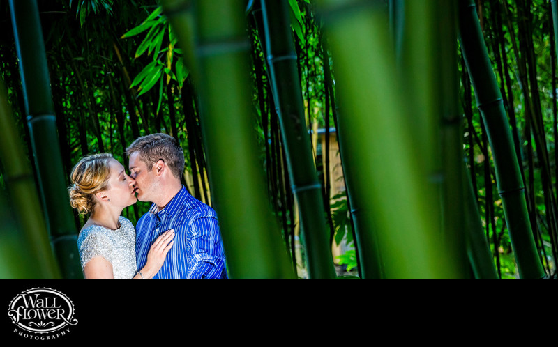 Engagement portrait among bamboo at Point Defiance Zoo