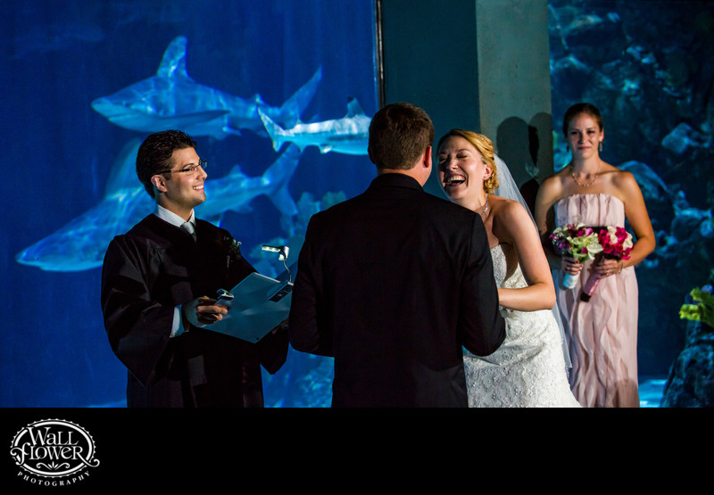 Bride laughs during wedding ceremony in shark aquarium