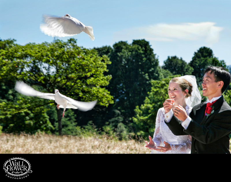 Dove release during wedding ceremony at Volunteer Park