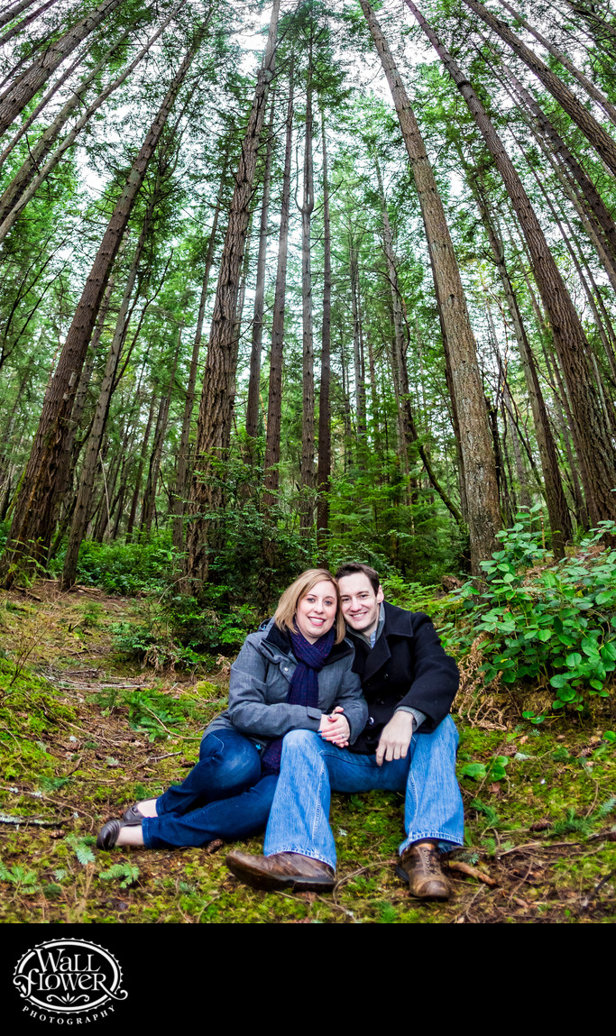 Engaged couple sitting in mossy Point Defiance forest