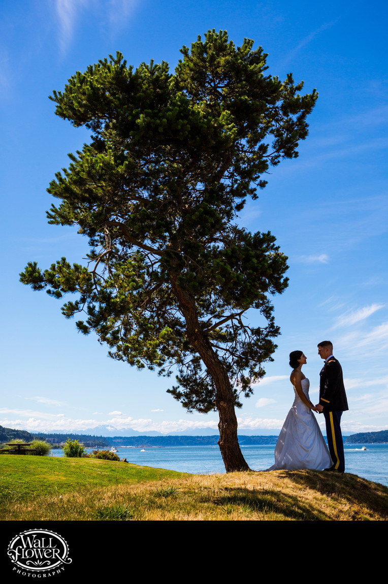 Bride and groom by Ruston Way tree by Puget Sound