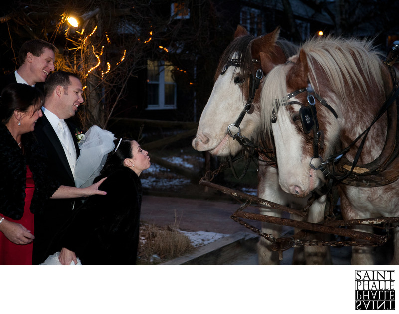 Mountain Top Inn Wedding Two Horses Smiling With Bride