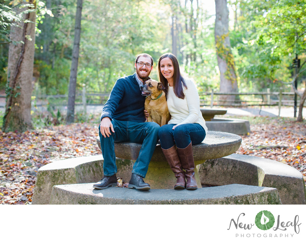 Wissahickon Park Engagement Photos