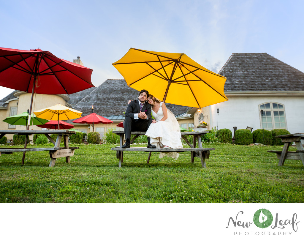 Moon Dancer Winery Wedding