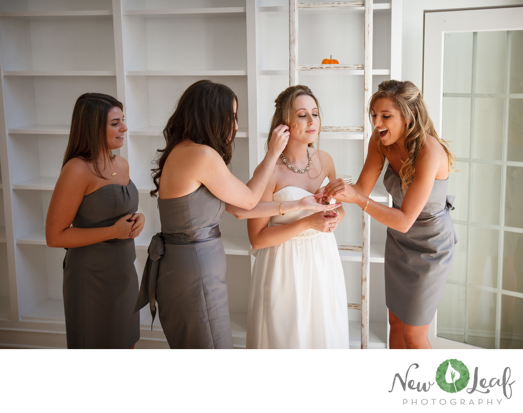 Wedding Photographer for John James Audubon Center