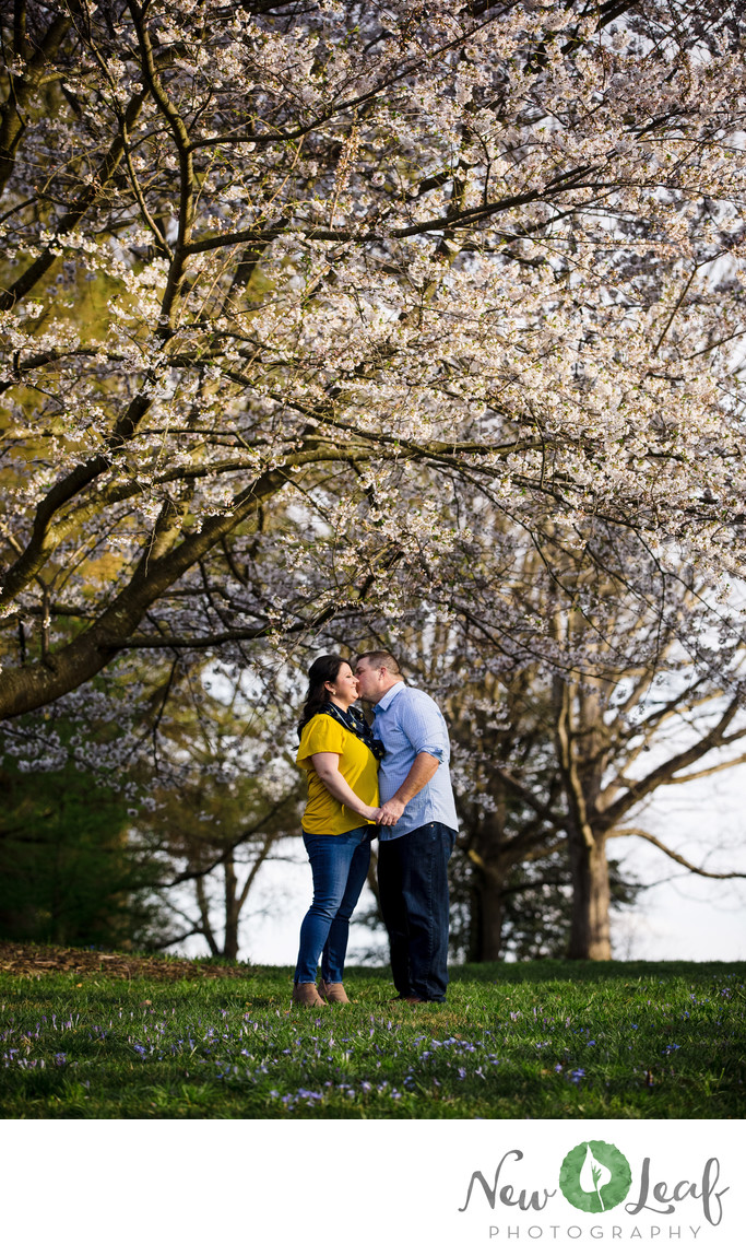 Spring Engagement Session at Longwood Gardens