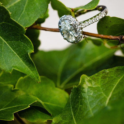 Engagement Photos at Longwood Gardens