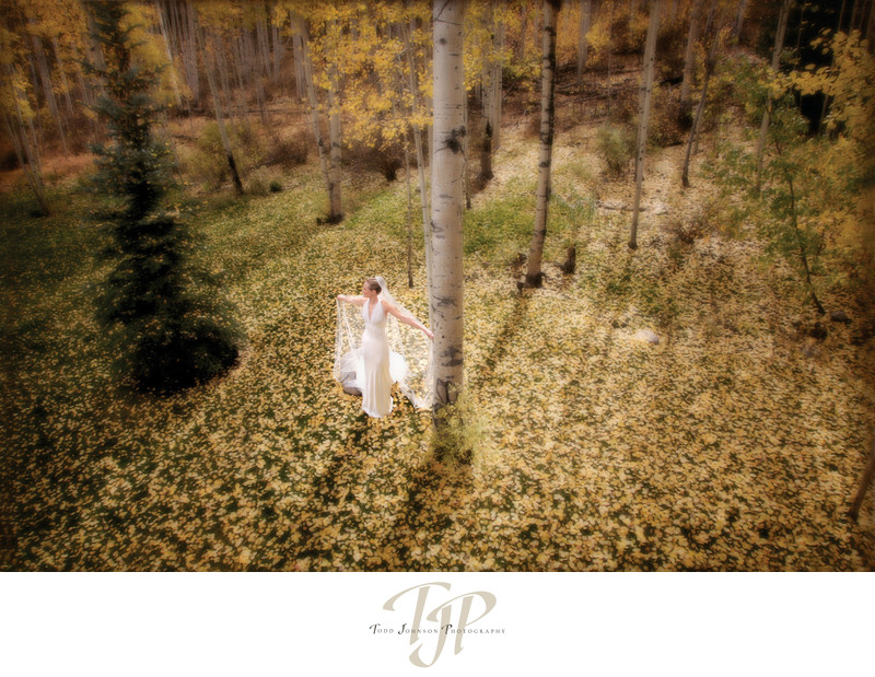 Veil Colorado wedding