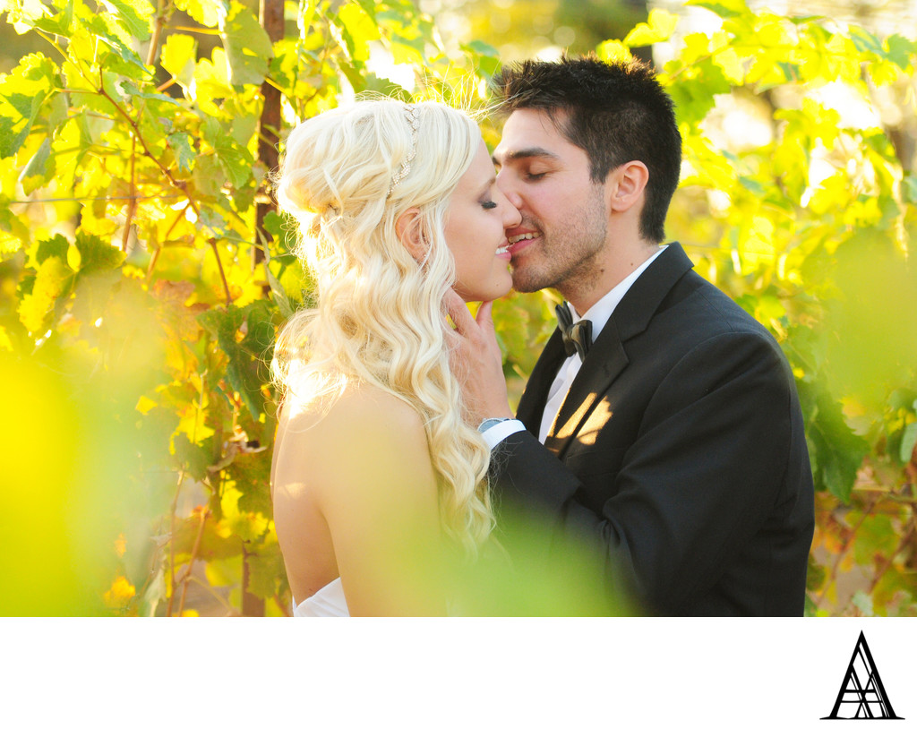 Romantic Vineyard Wedding Photographer Sacramento