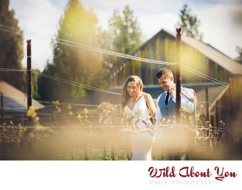 reid family vineyards wedding photographer