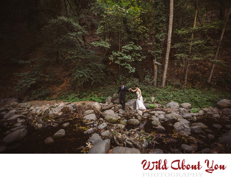 best south bay wedding photographer
