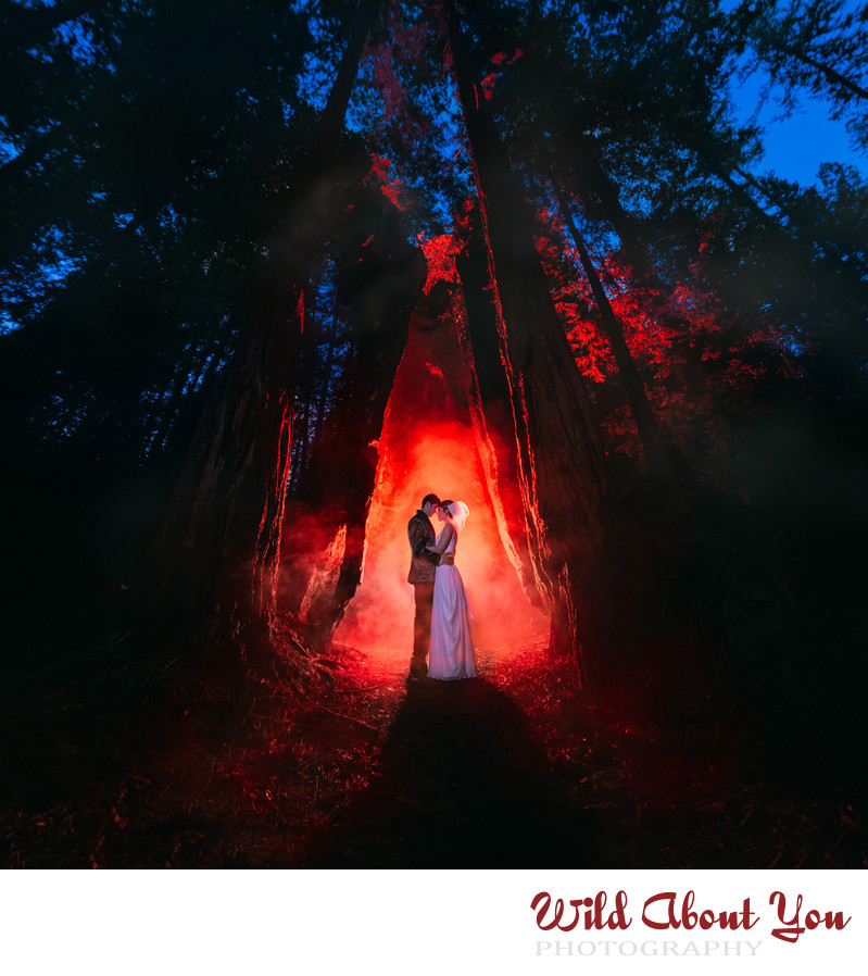 wedding photographers redwoods Bay Area
