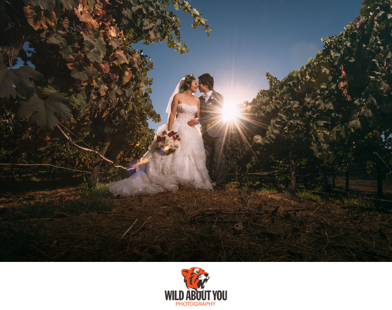 livermore vineyard wedding photography