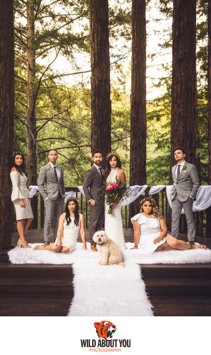 Wedding Photographer Redwoods Bay Area