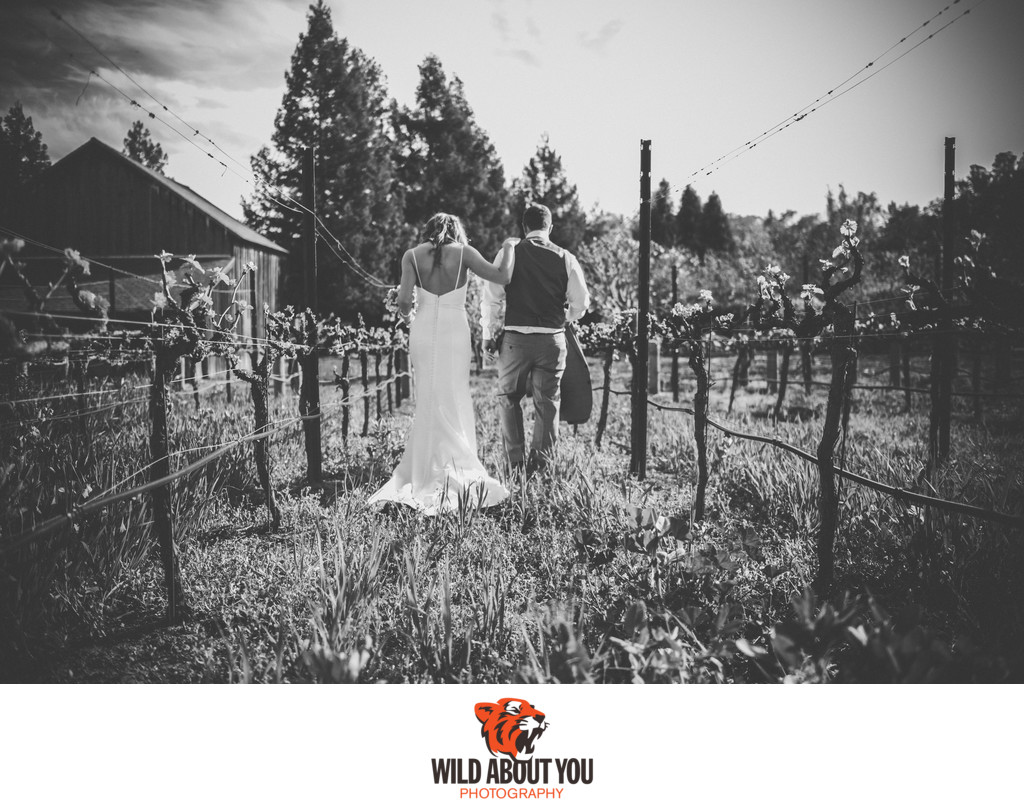 elopement wine country